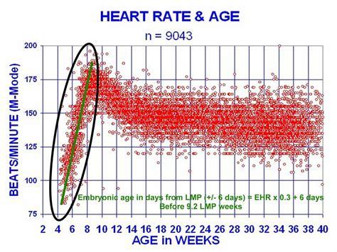 heart rate wiki everipedia