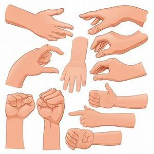 Hands Vectors, Photos and PSD files   Free Download