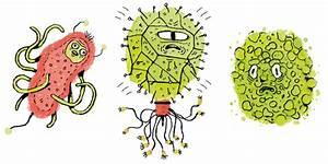 Bacteria Clipart Fungus Bacteria  Bacteria Fungus Bacteria