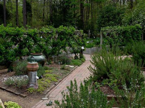 unc botanical gardens carolina botanical garden