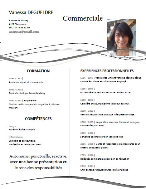 Modele Cv Professionnel 2015 by Curriculum Vitae Mod 232 Le 2015 Mod 232 Le De Cv Professionnel