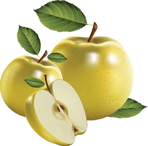 Apple PNG images free download, apple PNG