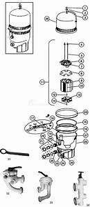 Pentair Fns Plus D E  Filter Parts
