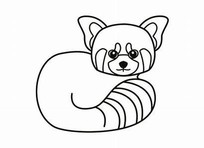 Panda Coloring Pages Drawing Pandas Clipart Drawings