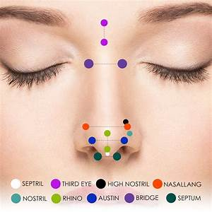Nose Piercing  U0026 Nose Jewelry Guide