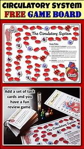 Circulatory System Game Board  Free