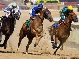 Virtual Horse Racing Betting Strategy - 4 betting tips
