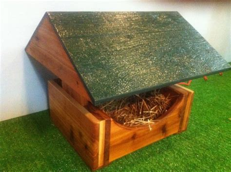 How To Build A Feral Cat Shelter For The Winter Catster