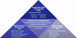 Comparison of current diagnostic criteria for mild ...