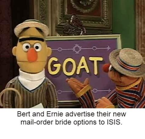 Mail Order Bride Meme - goat bert and ernie advertise their new mail order bride options to isis isis meme on sizzle