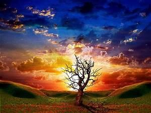 Beautiful Landscape Wallpapers, Free Landscape Desktop ...