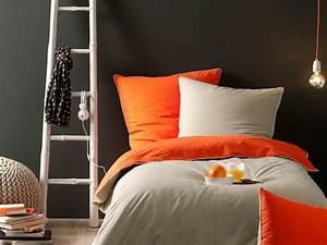 chambre bi couleur 165737 gtgt emihemcom la meilleure With couleur facade maison contemporaine 14 maison haute savoie renovee une batisse familiale