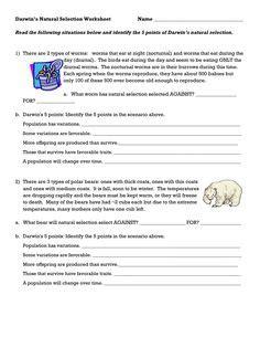Darwin's Natural Selection Worksheet Answers  School  Worksheets, Natural Selection, Darwin