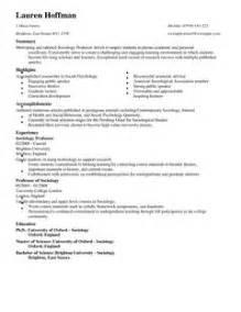 falsifying education on resume professor cv exle for education livecareer