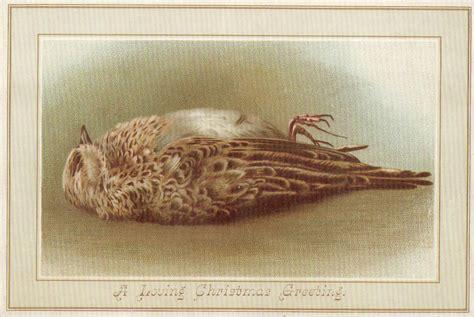 dead birds  victorian christmas cards