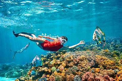 Australia Tourism There