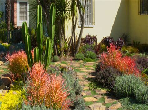 landscaping with cactus cactus landscaping cactus rock garden ideas cactus garden landscape ideas garden ideas