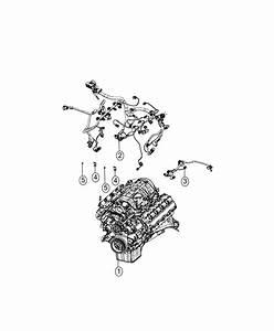 2017 Dodge Charger Wiring  Engine  Powertrain  Oil  Mopar