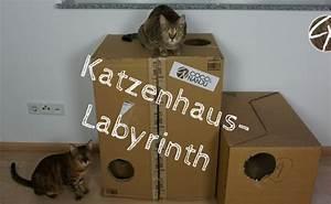 Katzenspielzeug Selber Machen Karton : basteln archive coco und nanju ~ Frokenaadalensverden.com Haus und Dekorationen