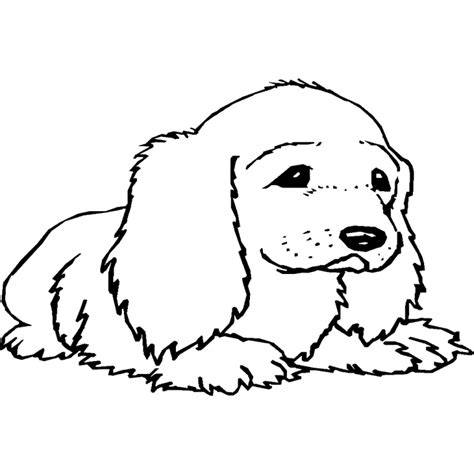 Puppy Hond Kleurplaat by Honden Kleurplaten Kleurplaat Hond Overal Kleurplaat
