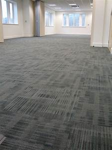 Decorating Awesome Dolphin Carpet And Tile For Modern