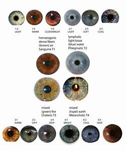 Eye Types & Iridology | expressing your truth blog