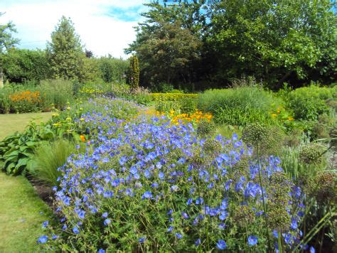 Bluebell Cottage Gardens