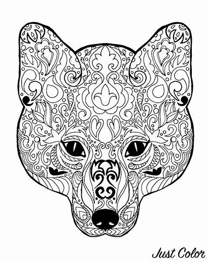Fox Head Patterns Coloring Foxes Simple Pages