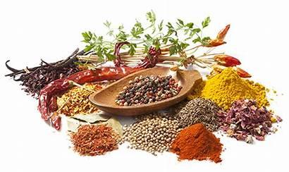 Spices Sri Lanka Spice Bio Industry Organic
