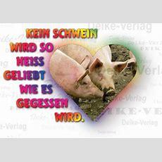 Sprüche  Kein Schwein Wird So Heiß Geliebt, Wie Es