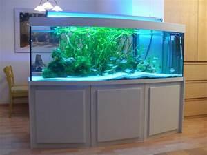Aquarium Als Raumteiler : aquarienbau aquarien terrarien ~ Michelbontemps.com Haus und Dekorationen