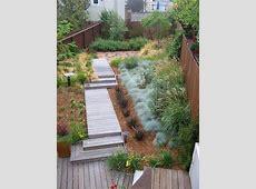 Superb Blue Oat Grass fashion Other Metro Modern Landscape