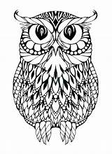 Owl Horned Drawing Coloring Clipartmag sketch template