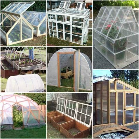 Best Greenhouses by 18 Best Greenhouses That Won T Your Budget