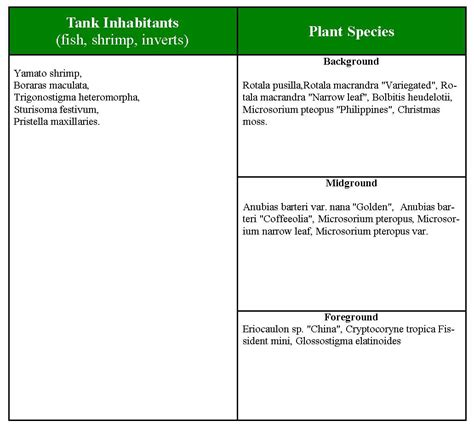 Aquascape Plants List by Aquascape Of The Month May 2008 Quot My Homeland