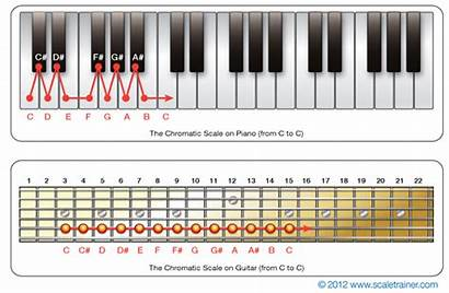 Chromatic Scale Piano Guitar Scales Notes Fretboard