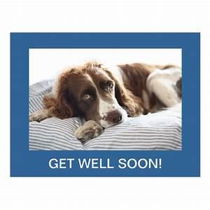 cute dog get well soon postcard | Zazzle.com