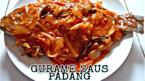 Ikan gurame adalah satu protein yang sangat fleksibel dimasak dengan berbagai cara. Gurame Saus Padang Ala Restoran : Resep Udang Saus Padang ...