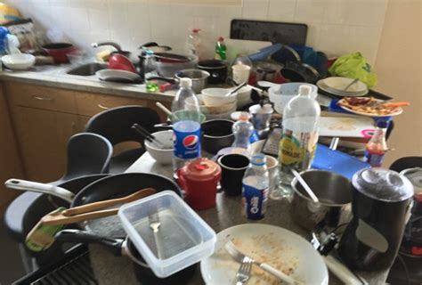 disgusting student flat  britain  sheffield