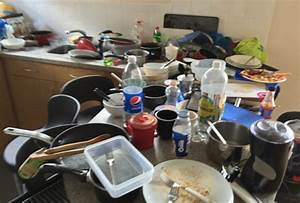 The most disgusting student flat in Britain in Sheffield ...