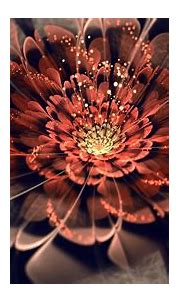 flowers, Fractal, Abstract, Fractal Flowers Wallpapers HD ...
