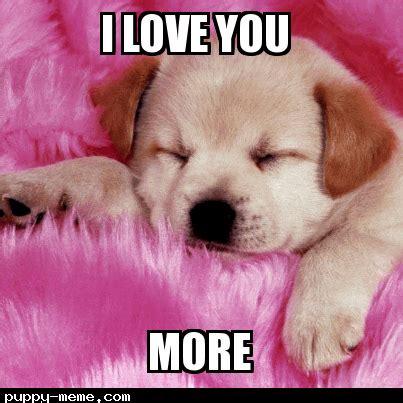 Cute I Love You Meme - cute animal i love you meme www pixshark com images galleries with a bite