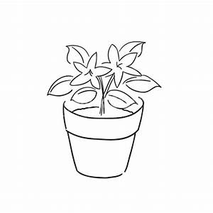 Flowerpots clipart flower vase - Pencil and in color ...