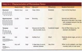 Abdominal Assessment Percussion Sounds
