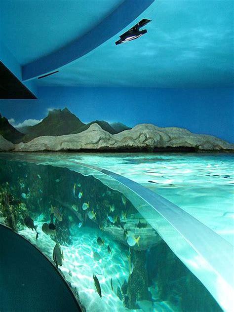 l aquarium de la rochelle tourisme en charente maritime vacances proche de la rochelle