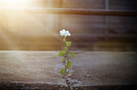 overcoming  lifelong struggle  members story