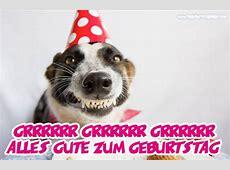 Lustige geburtstagsbilder Top Geburtstagsbilder