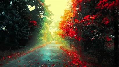 Feeling Natural Nature Phaeleh Background