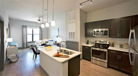 stunning baton rouge one bedroom apartments contemporary