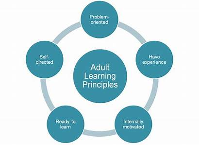 Learning Adult Adults Experience Motivated Principles Presentations